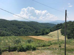 photo_2018-06-18_23-09-27 (2)